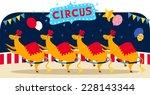 Circus Llama Number With Circu...