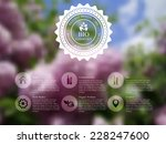 vector illustration of  web and ... | Shutterstock .eps vector #228247600