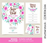 vector set of invitation cards... | Shutterstock .eps vector #228306166