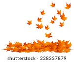 maple leaves falling into a... | Shutterstock .eps vector #228337879