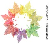 leaf abstract background.... | Shutterstock .eps vector #228400234