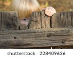 cute little blond girl peering... | Shutterstock . vector #228409636