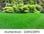 Peaceful Garden Lawn Background