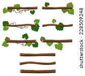 set of branches. vector...   Shutterstock .eps vector #228509248
