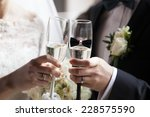 glass of champagne in a hand of ... | Shutterstock . vector #228575590
