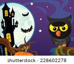 cartoon halloween scene   owl... | Shutterstock . vector #228602278