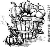 pumpkins in a bucket | Shutterstock .eps vector #228617839