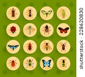 Insects Round Button Flat Icon...