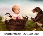 Portrait of a small baby girl at a Lake in Wicker Basket with dog  - stock photo
