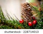 christmas decoration | Shutterstock . vector #228714013