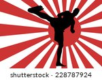 vector image of the japanese... | Shutterstock .eps vector #228787924
