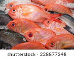 Fish At The Fishmarket