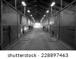 center path through horse... | Shutterstock . vector #228897463