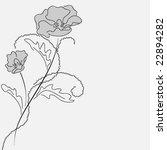 poppy card | Shutterstock .eps vector #22894282