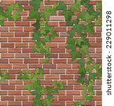Brick Wall With Ivy  Vector...