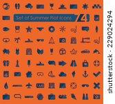 set of summer flat icons | Shutterstock . vector #229024294