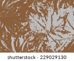 autumn dry maple leaves... | Shutterstock .eps vector #229029130