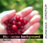 red berries on palm. blur...   Shutterstock .eps vector #229029139