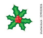 holly branch | Shutterstock .eps vector #229032826