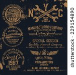 vintage graphic set for t shirt | Shutterstock .eps vector #229154890