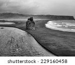 Large Rock On A Black Sand Beach