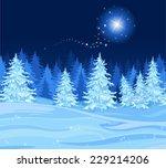 shutting star over a fir tree...