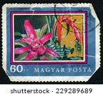 hungary   circa 1971  a stamp... | Shutterstock . vector #229289689