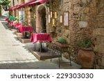 small restaurants   picturesque ... | Shutterstock . vector #229303030