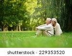 happy nice senior couple in... | Shutterstock . vector #229353520