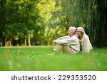 happy nice senior couple in...   Shutterstock . vector #229353520