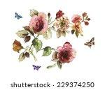 flowers | Shutterstock . vector #229374250