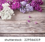 the beautiful lilac on a wooden ... | Shutterstock . vector #229566319