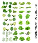 vegetables collection isolated... | Shutterstock . vector #229582810