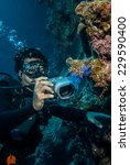 diver taking picture of... | Shutterstock . vector #229590400