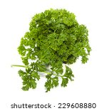 bunch of parsley on white