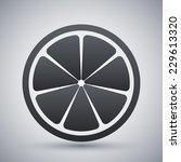 vector citrus icon | Shutterstock .eps vector #229613320