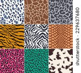 repeated wild animal skins... | Shutterstock .eps vector #229637680