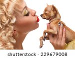 chihuahua puppy in the hands of ... | Shutterstock . vector #229679008