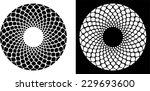 floral circle   design element