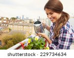 Woman Watering Plant In...