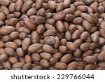 Closeup On Pecan Nuts Stacked...