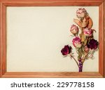 Postcard  With Dried Roses On...