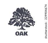 oak tree logo silhouette... | Shutterstock .eps vector #229904674