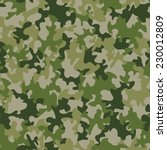 seamless camouflage pattern   Shutterstock . vector #230012809