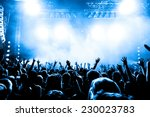 silhouettes of concert crowd in ... | Shutterstock . vector #230023783