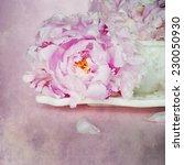 peonies flower  | Shutterstock . vector #230050930