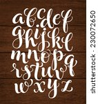 vector set with hand written... | Shutterstock .eps vector #230072650