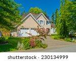 custom built luxury house with...   Shutterstock . vector #230134999