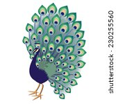 green blue decorative peacock... | Shutterstock .eps vector #230255560