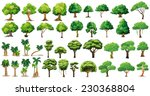 diversity of trees set on white | Shutterstock .eps vector #230368804